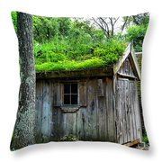 Barn With Green Roof Throw Pillow