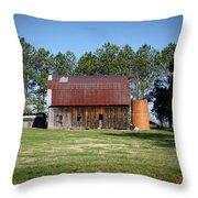 Barn With Tree In Silo Throw Pillow by Douglas Barnett