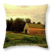 Barn With Wildflowers Throw Pillow