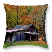 Barn Woodford Mountain Throw Pillow