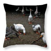 Barn Yard Quackers Throw Pillow