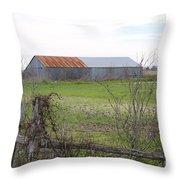 Barn4 Throw Pillow