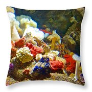 Barnacles And Sea Urchin Among Invertebrates In Monterey Aquarium-california  Throw Pillow