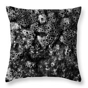 Barnacles Two  Throw Pillow