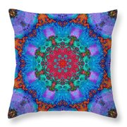 Barnie Paw Print Kaleidescope 3 Throw Pillow