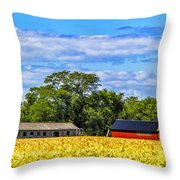 Barns In The Distance Throw Pillow