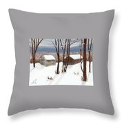 Barns Of West Sand Lake Throw Pillow