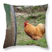 Barnyard Chicken Throw Pillow