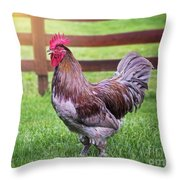 Barnyard Rooster Throw Pillow