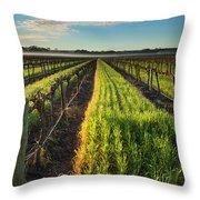 Barossa Vineyard Morning Throw Pillow