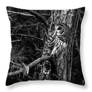 Barred In Black And White Throw Pillow