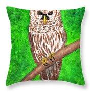 Barred Owl 08-18-2015 Throw Pillow