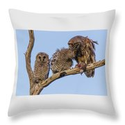 Barred Owl Family Throw Pillow