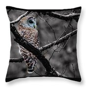 Barred Owl Hungry  Throw Pillow