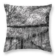 Barred Owl In Monochrome Throw Pillow