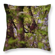 Barred Owl In The Forest Throw Pillow