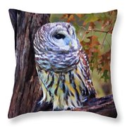 Barred Owl In The Rain Oil Painting Throw Pillow