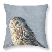 Barred Owl In The Snowstorm Throw Pillow