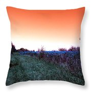 Barred Owl Trail Throw Pillow
