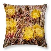 Barrel Cactus Flowers 2 Throw Pillow