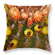 Barrel Cactus Throw Pillow