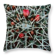 Barrel Cactus With Pink Blooms Throw Pillow
