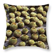 Barrel Garden Throw Pillow