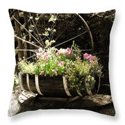 Barrell Of Fun Throw Pillow
