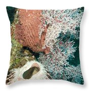 Barrell Sponges And Sea Fans Throw Pillow