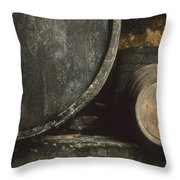 Barrels Of Wine In A Wine Cellar. France Throw Pillow