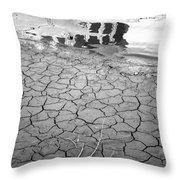 Barren Dry Land Throw Pillow
