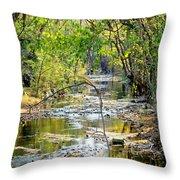 Barren Fork Creek Throw Pillow