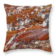 Barrens Throw Pillow