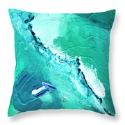 Barrier Reef Throw Pillow