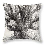 Barringtonia Tree Throw Pillow