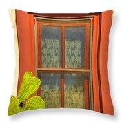 Barrio Window Throw Pillow