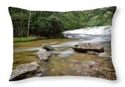 Bartlett Experimental Forest - Bartlett New Hampshire Usa Throw Pillow by Erin Paul Donovan