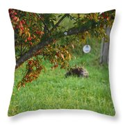 Barton Backyard Throw Pillow