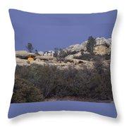 Base Camp - White Ledge Plateau - San Rafael Wilderness Throw Pillow