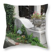 Basement Entry Garden Throw Pillow