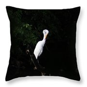 Bashful Egret Throw Pillow