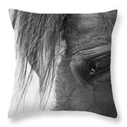 Bashful Throw Pillow
