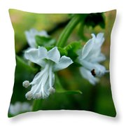Basil Bloom Throw Pillow