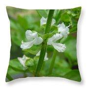Basil Blossom Throw Pillow