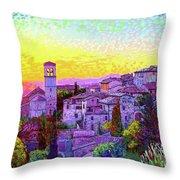 Basilica Of St. Francis Of Assisi Throw Pillow