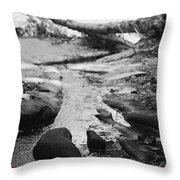Basin Creek Throw Pillow