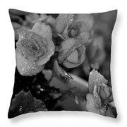Basket Of Begonias Throw Pillow