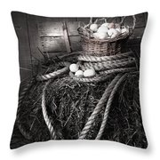 Basket Of Eggs On A Bale Of Hay Throw Pillow