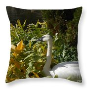 Basking By The Pond Throw Pillow