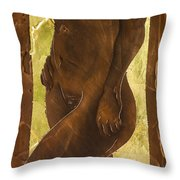 Basking In The Glow Throw Pillow